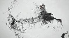 Crow, Rabe, fliegend, Rauch, Spray, schwarz wallpaper