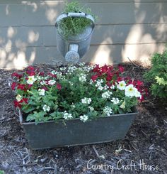 Old galvanized tub and water can planter