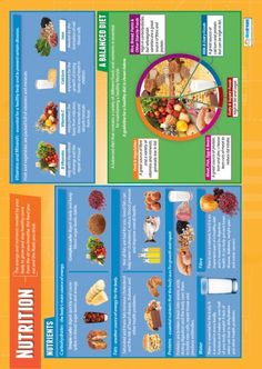 Essay Of Health From Our Physical Education Poster Range The Nutrition Poster Is A Great  Educational Resource That Helps Improve Understanding And Reinforce  Learning Essay Term Paper also Essay Style Paper  Best Physical Education Posters Images  Education Posters  Research Proposal Essay Example