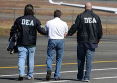 DEA Appears To Stand Down On Gateway Drug Theory Cannabis activists are celebrating yet another victory in the War on Drugs. This week, the DEA's website removed a page publication that contained misinformation about marijuana – including the. Mafia, Weed Jokes, Drug Enforcement Administration, Law Enforcement, International Energy Agency, Stand Down, War On Drugs, Violent Crime, Adult Fun