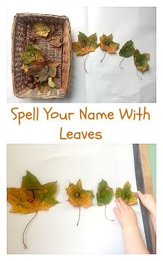 spell your name with leaves fun autumn and fall themed preschool activity for name and letter recognition