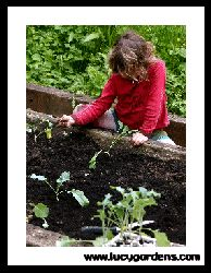Kids gardening site - links to sensory garden ideas, herb gardens and windowsill gardens.