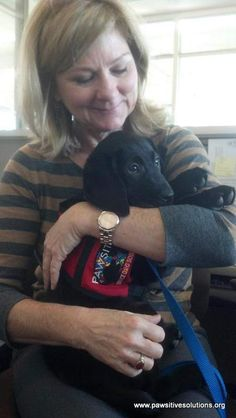 Pawsitive Service Dog Solutions' newest Autism Service Dog in Training, Bodie, went to his first day of school today. www.pawsitivesolutions.org