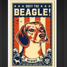 Obey the BEAGLE!!!