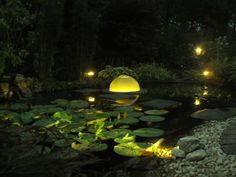 Night View / Pond Lighting / Vijververlichting
