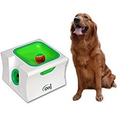 iDog Midi Rechargeable Dog Ball Launcher Automatic Pet Ball Thrower Interactive Fetch Machine with 3 Balls
