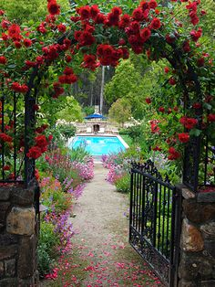 Red climbing roses- lovely entry, via michaelbatesgardens.com