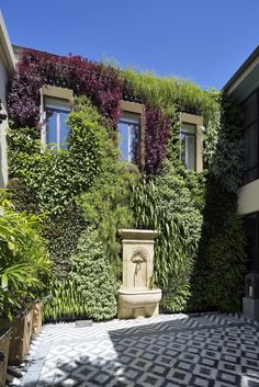 Another beautiful vertical garden. Vertical Gardens, My Property, Sustainable Design, Exterior Design, Sustainability, Terrace, Sidewalk, Green Walls, Mansions