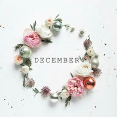 ༺ Ⱳᴇʟϲoмᴇ ༻ December