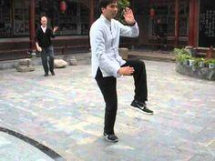 Zhu Xiang Hua 13 Form (front view)
