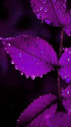 Papéis de parede roxo mais bonitos para celular - Quebrei a Regra Trippy Iphone Wallpaper, Ed Wallpaper, Purple Wallpaper Iphone, Purple Backgrounds, Aesthetic Iphone Wallpaper, Wallpaper Backgrounds, Aesthetic Wallpapers, Dark Purple Aesthetic, Lavender Aesthetic