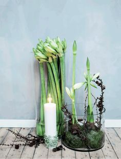 DIY: 8 grønne juleidéer | femina.dk