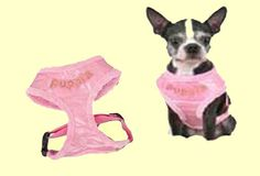 Sold Out!  This Deluxe Winter Puppia Harness is no longer available. Check out our website at www.puppiaharness.ca for other Puppia harnesses. Pugs, Boston Terrier, Dog Cat, Bling, Warm, Website, Winter, Check, Fabric