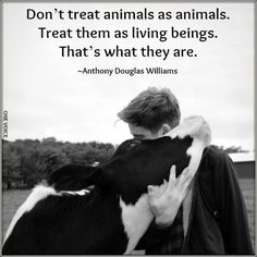 Don't treat animals as animals. Treat them as living beings. That's what they are.