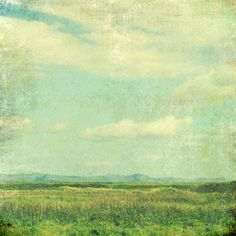 Landscape Photography  Fine Art  Print   Meadow  by LupenGrainne, $30.00