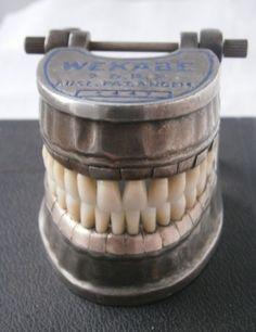 German dental teaching model 1930