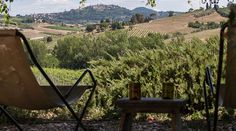 Stunning luxury property for sale near Montepulciano, with a beautiful 'designer rustic' interior, 8 bedrooms, pool, annex and ha Siena, Luxury Property For Sale, Small Luxury Hotels, Farmhouse Remodel, Luxury Holidays, Rustic Elegance, Maine House, Rustic Interiors, World Heritage Sites