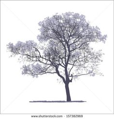 Collection Of Trees Silhouettes Stock Vector 82176229 : Shutterstock Architecture Graphics, Architecture Drawings, Landscape Architecture, Landscape Design, Photomontage, Tree People, Tree Sketches, Landscape Materials, Watercolor Trees