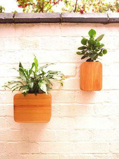 BRINGING NATURE INSIDE... Tantidesign | Floating Cedar wall planter