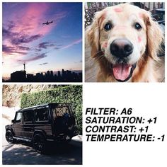 #filtrsA6 free filter❕basic, simple filter. works on everything and it's good for a personal feed if you just want a nice filter — thank you so much for 44k!!