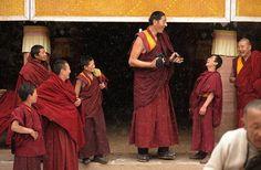 2.14-метровый монах с продвинутым фотоаппаратом в монастыре на северо-западе Китая / Живой лёд глобальных вопросов
