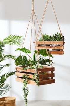beautiful hanging plants ideas for home decor - Page 30 of 42 - SooPush beautiful hanging plants ideas for home decor - Page 30 of 42 - SooPush,DIY Garden/House hanging plants, indoor plants, outdoor plants furniture gifts home decor tree crafts projects Hanging Planter Boxes, Hanging Plant Diy, Indoor Hanging Plants, Indoor Plant Decor, Hanging Herb Gardens, Hanging Herbs, Planter Ideas, Plant Hanger Diy, Balcony Herb Gardens