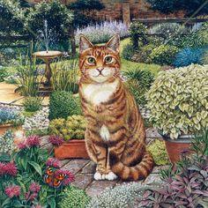 Squire by Geoff Tristam ~ cat posing in the garden