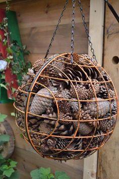 all sizes of pine cones! - all sizes of pine cones! …, # large # pine cones # retreat in the garden, retreat in the garden, Garden Bugs, Garden Insects, Diy Garden, Garden Crafts, Garden Projects, Garden Art, Garden Design, Garden Drawing, New Build Garden Ideas