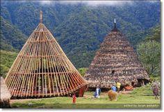 Mbaru Niang rumah adat di Pulau Flores | Home Design and Ideas