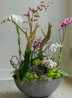 Aliza Honda - Google+Orchids arrangement featuring bright orange vanda orchids punctuated with Red Anthuriums bound together with Bear Grass.