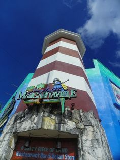Margaritaville Cozumel.  We've been to Cozumel 3 times, but this past Dec was our first time at the Margaritaville there.  Past times, we did Carlos and Charlies, Senor Frogs and swam with the dolphins!!