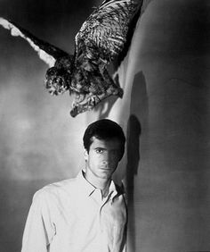 Photo of Anthony Perkins/Norman Bates for fans of Psycho 74347 Scary Movies, Old Movies, Alfred Hitchcock Quotes, Norman Bates, Anthony Perkins, Cinema, Horror Films, Horror Art, Director