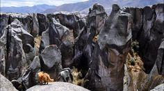 Marcahuasi est un plateau des andes péruviennes à 3-5h de route de Lima et à environ 4000m d'altitude où se trouvent des rochers qui semblent sculptés et représentés diverses formes plus ou moins identifiable selon son imagination.