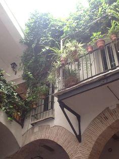 Casa señorial del s.XVI que fue la casa-taller del pintor Juan de Juanes y que actualmente es un Youth Hostel.  #CaminsGremials