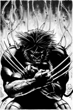 Original Wolverine piece on inks and copic tones