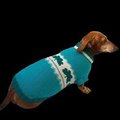 Knitted clothes dog dachshund (@dachshundknit) • Фото и видео в Instagram Dachshund Clothes, Small Dogs, Skateboard, Outdoor Decor, Handmade, Skateboarding, Hand Made, Skate Board, Little Dogs