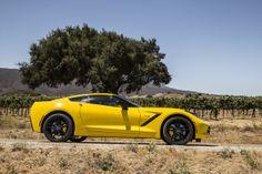 The New Corvette Stingray Is, Hands Down, The Most Fun Car I've Ever Driven Read more: http://www.businessinsider.com/corvette-stingray-z51-review-photos-2014-2?op=1#ixzz2t4Gt74NU