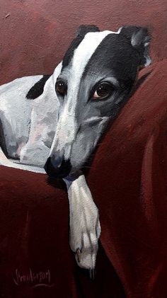 Excellent Beautiful dogs info are offered on our web pages. Animal Paintings, Animal Drawings, Greyhound Kunst, Grey Hound Dog, Canvas Prints, Art Prints, Dog Portraits, Art Plastique, Dog Art