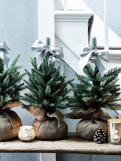 Cozy and Merry Christmas Idea: Place mini Christmas trees on your tablescape and at the end of your party, give them away as parting gifts.