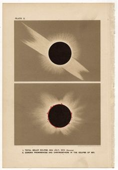 Dual solar eclipse artwork showing Corona and Chromosphere from 1878 and 1871