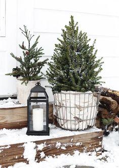 Eenvoudig Outdoor Christmas Decor - The Merrythought #christmas #Decor #eenvoudig #Merrythought #Outdoor
