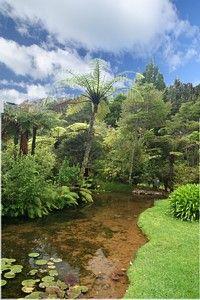 RAPAURA Watergardens, Boutique Accommodation & Dining - Coromandel Peninsula, New Zealand slideshow