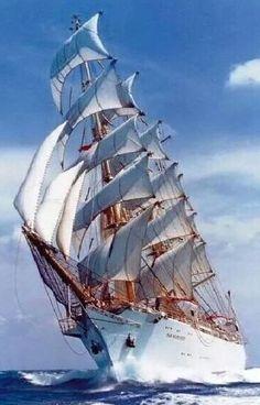 """Por su hermosura y majestuosidad es """"La Dama Blanca"""" del mar."""