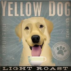 Yellow Dog Coffee—it's like they're on caffeine all the time!