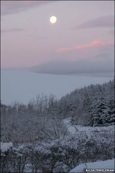 moon over scotland snow | The moon over a snowy landscape at Teviothead. Photo courtesy of Julia ...