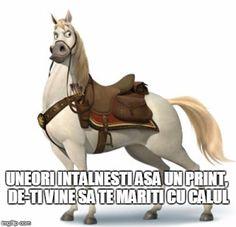 Citate pentru Facebook: Printul si calul Horses, Movie Posters, Animals, Facebook, Animales, Animaux, Film Poster, Animal, Animais