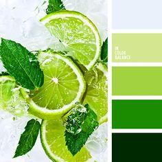 грязный белый, лаймовый, монохромная зеленая палитра, мятный цвет, насыщенный зеленый, подбор красок для ремонта, подбор палитр и цветов, светло-голубой, темно зеленый, цвет лайма, цвет мяты, яркий зеленый, яркий салатовый.