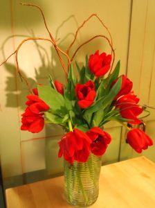 <3 Day Tulips! // sarah von pollaro