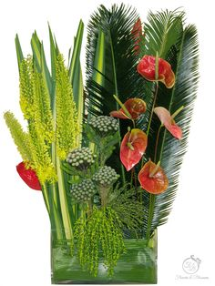 Funeral flowers Toronto - Flowers and Blossoms Casket Sprays, Sympathy Flowers, Funeral Flowers, Cactus Plants, Blossoms, Toronto, Wreaths, Gifts, Flowers