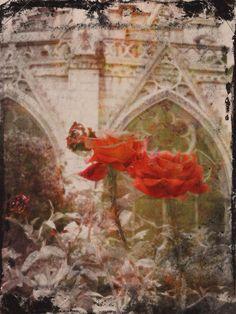 Norte Dame, Paris, by Stroke Of Art Art Warrior, Deb Dresler  $45